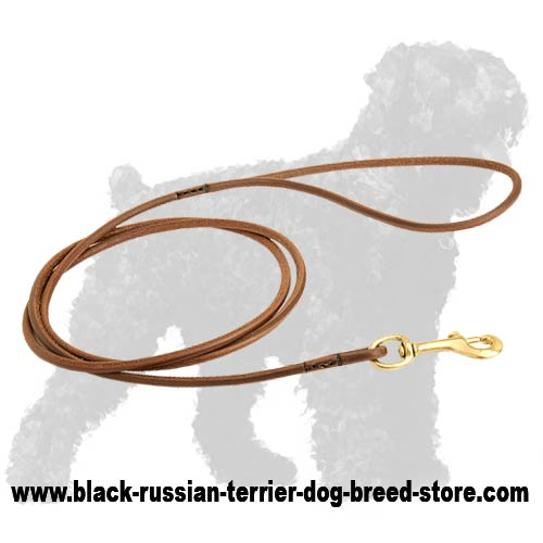 Elegant Leather Black Russian Terrier Dog Show Leash