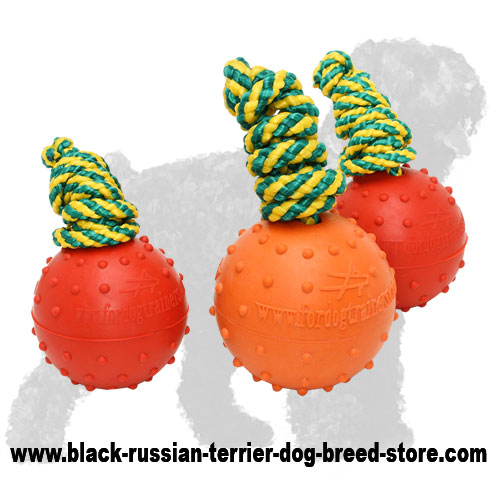 Bright Water Rubber Black Russian Terrier Ball on a Nylon String