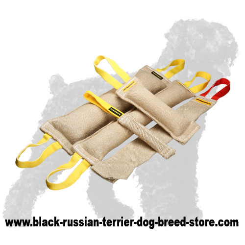 Reliable Jute Russian Terrier Set of Bite Tugs