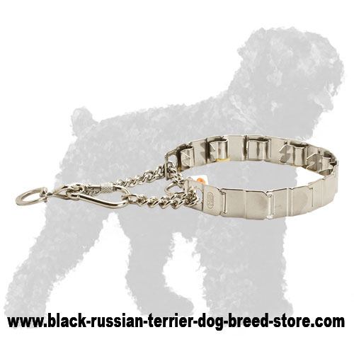 Stainless Steel Russian Terrier Prong Collar