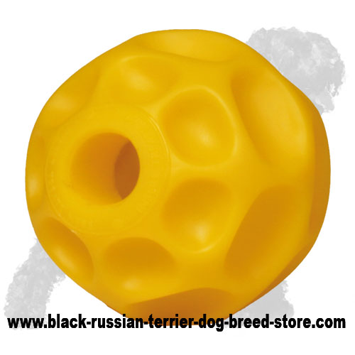 Soft Tetraflex Black Russian Terrier Treat Dispensing Toy