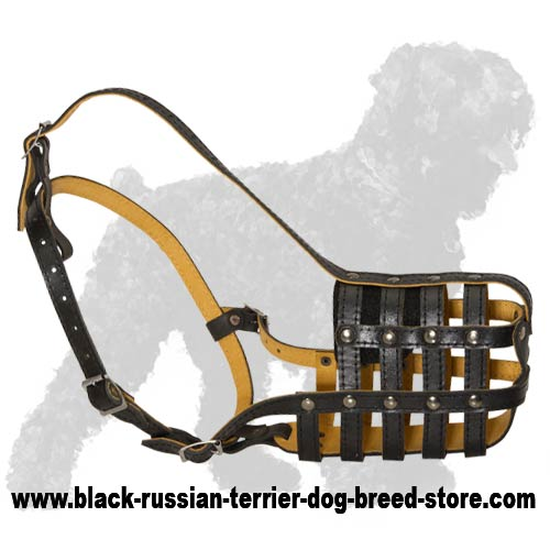 Exclusive Design Genuine Leather Muzzle for Black Russian Terriers