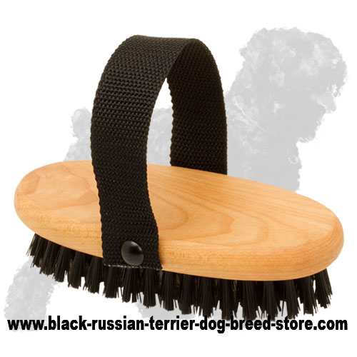 Wooden Russian Terrier Bristle Brush for Daily Grooming