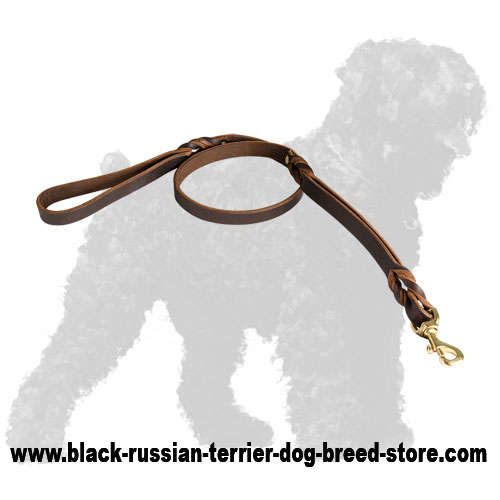 Reliable Braided Leather Black Russian Terrier Leash