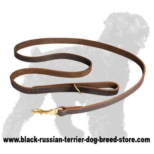 Quality Leather Black Russian Terrier Leash with Strong Fittings