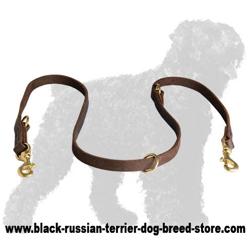 High Quality Leather Black Russian Terrier Leash