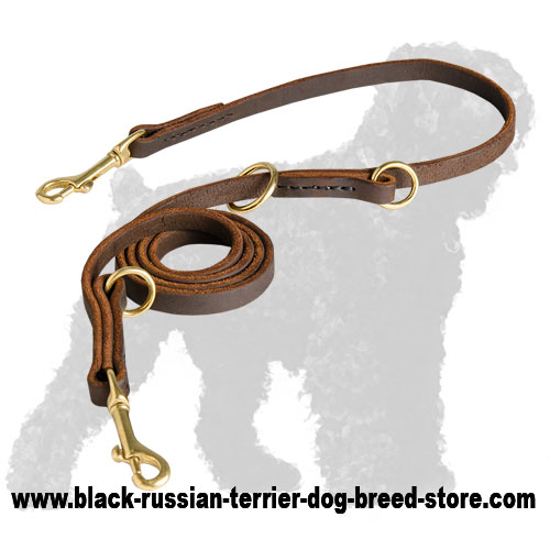 High Quality Multifunctional Training Leather Black Russian Terrier Leash