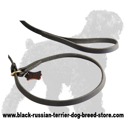 Soft Handle and Collar of Leather Russian Terrier Lead and Collar Combo