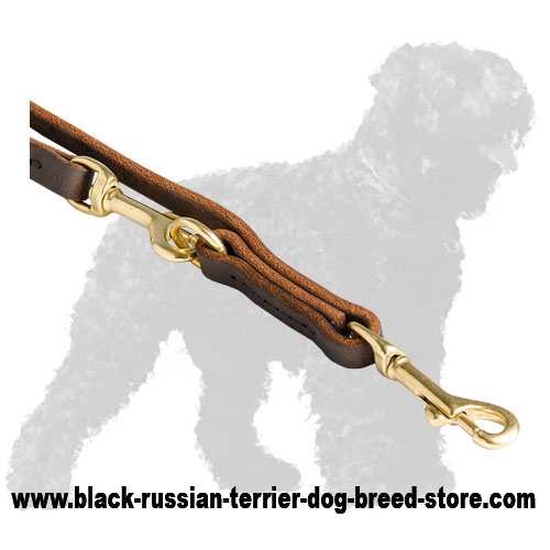 Durable Brass Fittings of Walking Leather Dog Leash for Black Russian Terrier