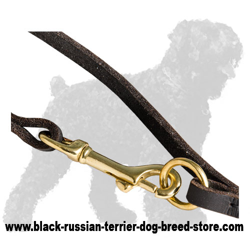 Durable Fittings of Walking Dog Leash for Black Russian Terrier
