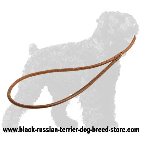 Reliable Handle of Leather Black Russian Terrier Show Leash