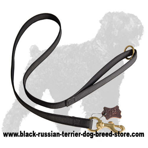 Walking I-Grip Nylon Black Russian Terrier Leash
