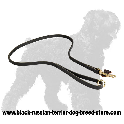 High Quality Training Leather Russian Terrier Leash