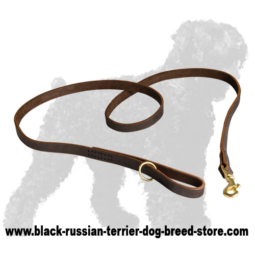 Strong Leather Dog Leash for Black Russian Terrier