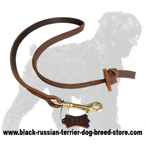 Soft Leather Dog Leash for Russian Terrier