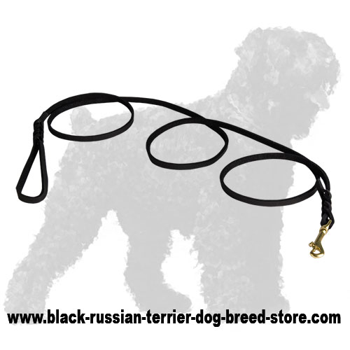 Strong Leather Russian Terrier Leash