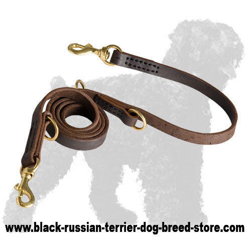 Durable Walking Leather Dog Leash for Black Russian Terrier