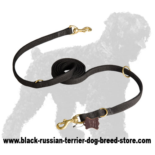 Reliable Nylon Russian Terrier Leash