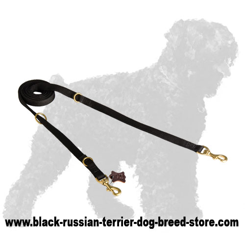 Hand-Made Walking Nylon Black Russian Terrier Leash