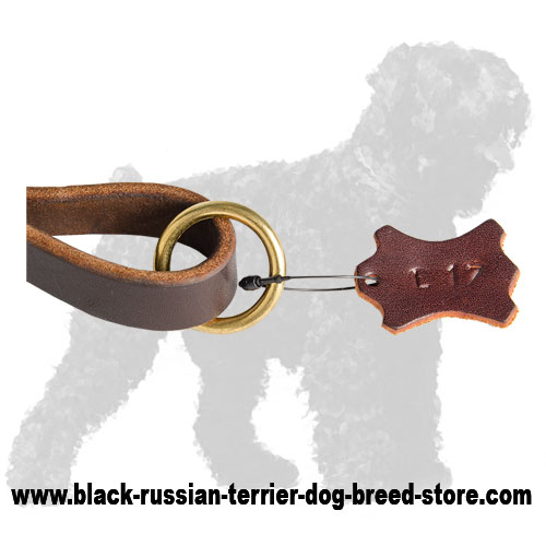 Wide O-ring of Braided Short Leather Russian Terrier Leash