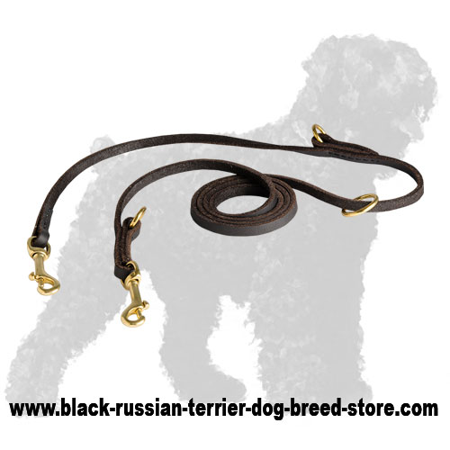Durable Training Leather Black Russian Terrier Leash