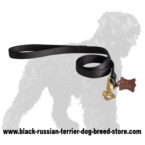 Nylon Russian Terrier Leash with Soft Handle and Snap Hook