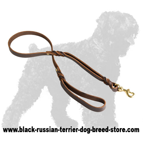 Durable Walking Leather Russian Terrier Lead with Stylish Braids
