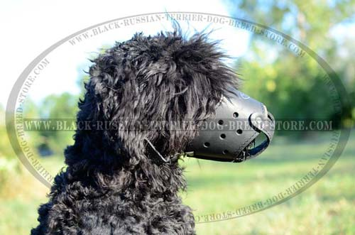 Handcrafted leather Black Russian Terrier muzzle