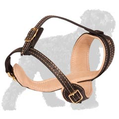 Handcrafted of Nappa Leather Muzzle