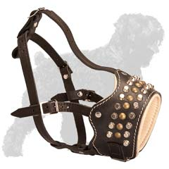 Royal studded leather muzzle with piramids