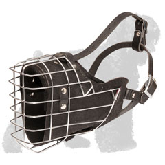 Walking Metal Cage Muzzle for Russian Terrier