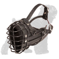Wire Cage Russian Terrier Muzzle with Strong Straps