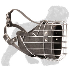 Training Wire Cage Padded Russian Terrier Muzzle