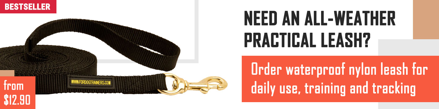 Tracking Nylon Black Russian Terrier Leash
