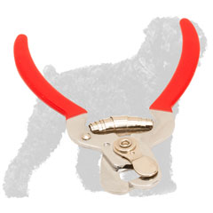 Easy to Use Russian Terrier Nail Clipper