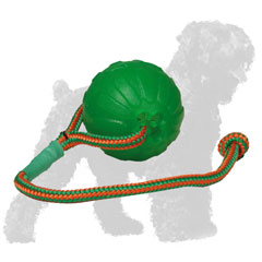Russian Terrier Ball for Chewing and Effective Basic Training