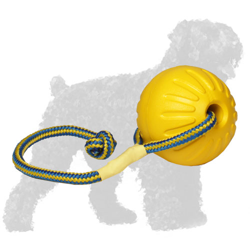 Flying and swinging toy on a rope for Black Russian Terrier