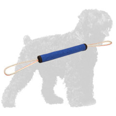 Training French Linen Russian Terrier Roll with Loops