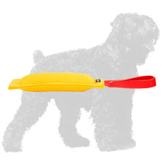 Training French Linen Russian Terrier Tug with Handle