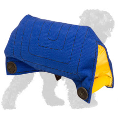 Safe French Linen Russian Terrier Bite Builder for Basic Grip Training