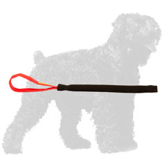 Safe French Linen Russian Terrier Puppy Tug for Basic Bite Training