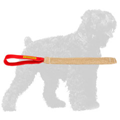Jute Russian Terrier Tug with Practical Handle