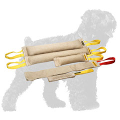 Practical Set of Dog Bite Tugs for Russian Terrier