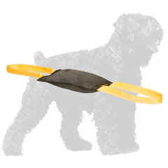 Retrieve Leather Black Russian Terrier Bite Tug with Handles