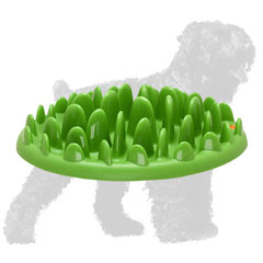 Non-Toxic Plastic Black Russian Terrier Feeder