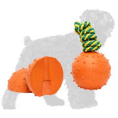 Dotted Water Floating Rubber Black Russian Terrier Ball