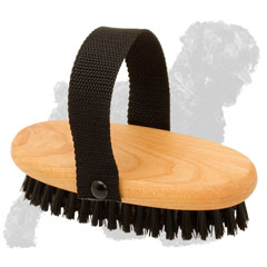 Easy in use Russian Terrier Brush witn Nylon Handle