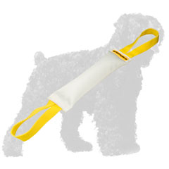 Strong Training Fire Hose Russian Terrier Bite Tug