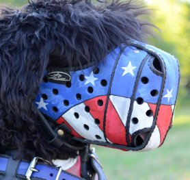 How to Measure dog for a Muzzle